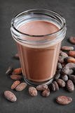 Chocolate milk and pieces of chocolate bar and cocoa beans Stock Image