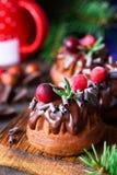 Chocolate mini budnt cakes with chocolate glaze, cranberries and rosemary. Chocolate mini budnt cakes decorated with chocolate glaze, swirls, cranberries and royalty free stock photo