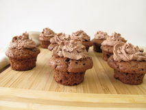 Chocolate mini-muffins Royalty Free Stock Photos