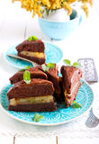 Chocolate and mint cake Royalty Free Stock Photography