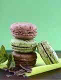 Chocolate and mint flavor macaroons Stock Image