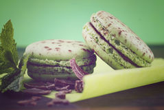 Chocolate and mint flavor macaroons Stock Photos