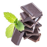 Chocolate with Mint isolated on white Stock Image