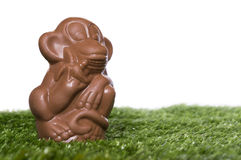 Chocolate monkey on the grass Stock Image