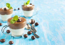 Chocolate mouse. Royalty Free Stock Images
