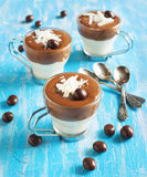 Chocolate mouse with dark and white chocolate Royalty Free Stock Photography