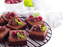 Chocolate mousse brownies with fresh raspberries. Chocolate  mousse brownies with fresh raspberries and chocolate pieces Stock Photography