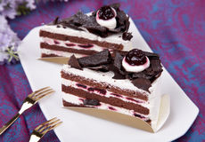 Chocolate mousse cake Stock Images