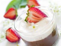 Chocolate Mousse dessert Stock Image