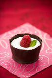 Chocolate mousse with raspberry Stock Photos