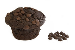 Chocolate Muffin. With chocolate lying beside stock photography