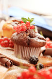 Chocolate muffin Stock Photography