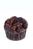 Chocolate Muffin. On a white background Stock Image