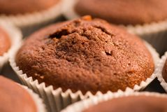 Chocolate Muffin. royalty free stock image