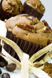 Chocolate muffin. Fresh homemade chocolate muffin with chopped pecan nuts, decorated coffee beans and whole pecan nuts Royalty Free Stock Images