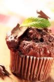 Chocolate muffin stock image