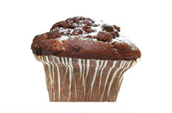 Chocolate Muffin. Against a white background Royalty Free Stock Photos