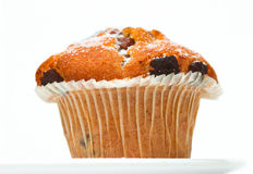 Chocolate Muffin. Against a white background Stock Images