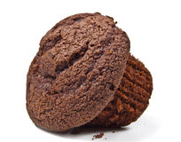 Chocolate Muffin. Double Chocolate Muffin Isolated on a White Background Royalty Free Stock Photos