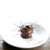 Chocolate muffin attacked by spoons. One of them found the way in.  (On white background, with space for text, using shallow depth of field Royalty Free Stock Image