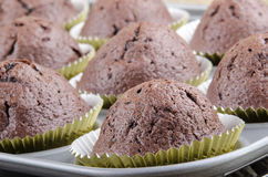 Chocolate muffin in a baking mold Royalty Free Stock Photo
