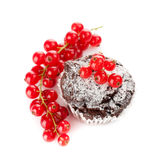 Chocolate muffin with berries Stock Photos