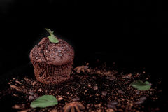 Chocolate muffin. In a black plate with some mint and  anis star on a black background Royalty Free Stock Image
