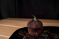 Chocolate muffin. In a black plate with some mint and  anis star on a black background Stock Photos