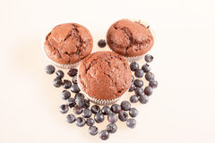Chocolate muffin with blueberries Stock Photography