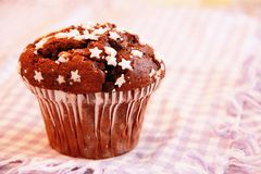 Chocolate muffin breakfast. A still-life of a chocolate muffin Royalty Free Stock Image