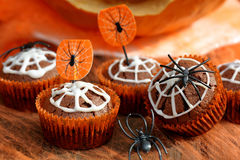 Chocolate muffin cake with spider web on Halloween day Stock Photos