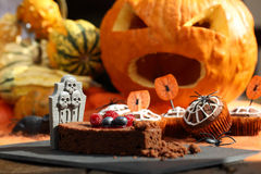Chocolate muffin cake with spider web on Halloween day Royalty Free Stock Image