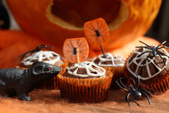 Chocolate muffin cake with spider web on Halloween day stock photography