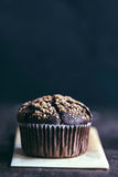 Chocolate muffin with caramel. Homemade chocolate muffin with caramel on the top,selective focus and blank space Royalty Free Stock Photography