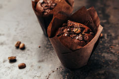 Chocolate Muffin with  Chips Royalty Free Stock Photo