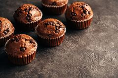 Chocolate Muffin with Chocolate Chips. Food background wiht copyspace stock photo