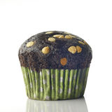 Chocolate Muffin with Chocolate Chips Stock Images