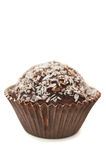 Chocolate Muffin with Coconut Chips Stock Images