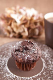 Chocolate muffin with cup of tea Stock Image