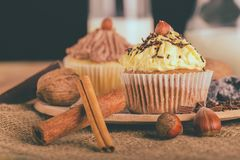 Chocolate muffin cupcake with vanilla cream and hazelnuts royalty free stock photography