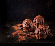 Chocolate muffin on dark background royalty free stock images