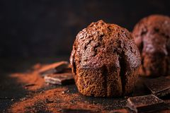 Chocolate muffin on dark background stock images