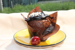 Chocolate muffin. Delicious chocolate muffin on a plate Royalty Free Stock Photography