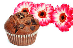 Chocolate muffin and flowers Royalty Free Stock Photography