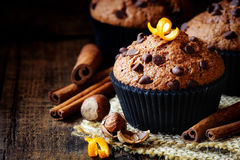 Chocolate muffin Royalty Free Stock Photos
