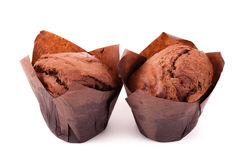 Chocolate muffin isolated on white background Royalty Free Stock Photography