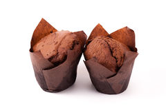 Chocolate muffin isolated on white background Royalty Free Stock Photos