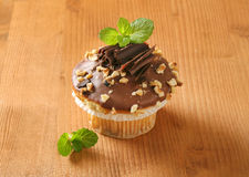Chocolate muffin with nuts stock photography