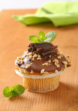 Chocolate muffin with nuts stock image