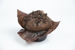 Chocolate muffin. Muffin with pieces of chocolate Royalty Free Stock Photography